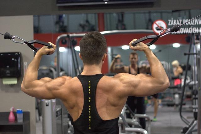 【背中の筋肉】広背筋や大円筋など背中の部位や仕組み