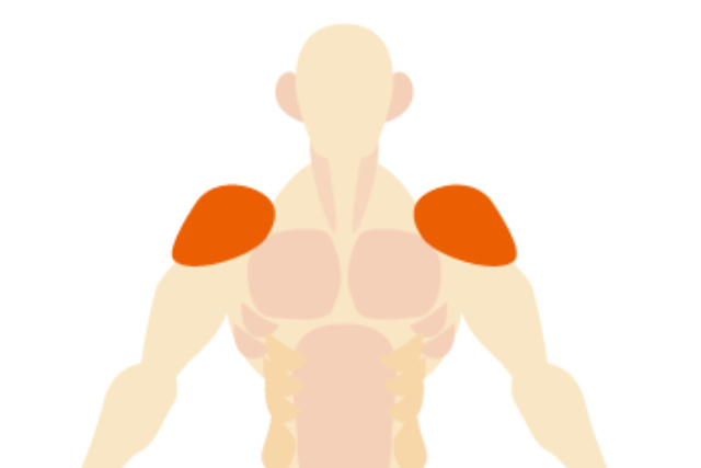 deltoid-muscle